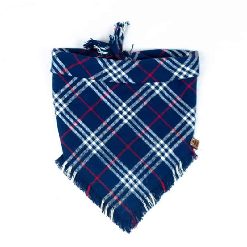 Amerikah Frayed Dog Bandana