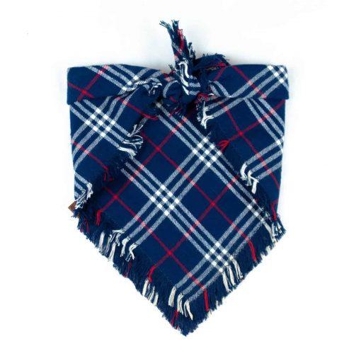 Blue, red and white frayed dog bandana