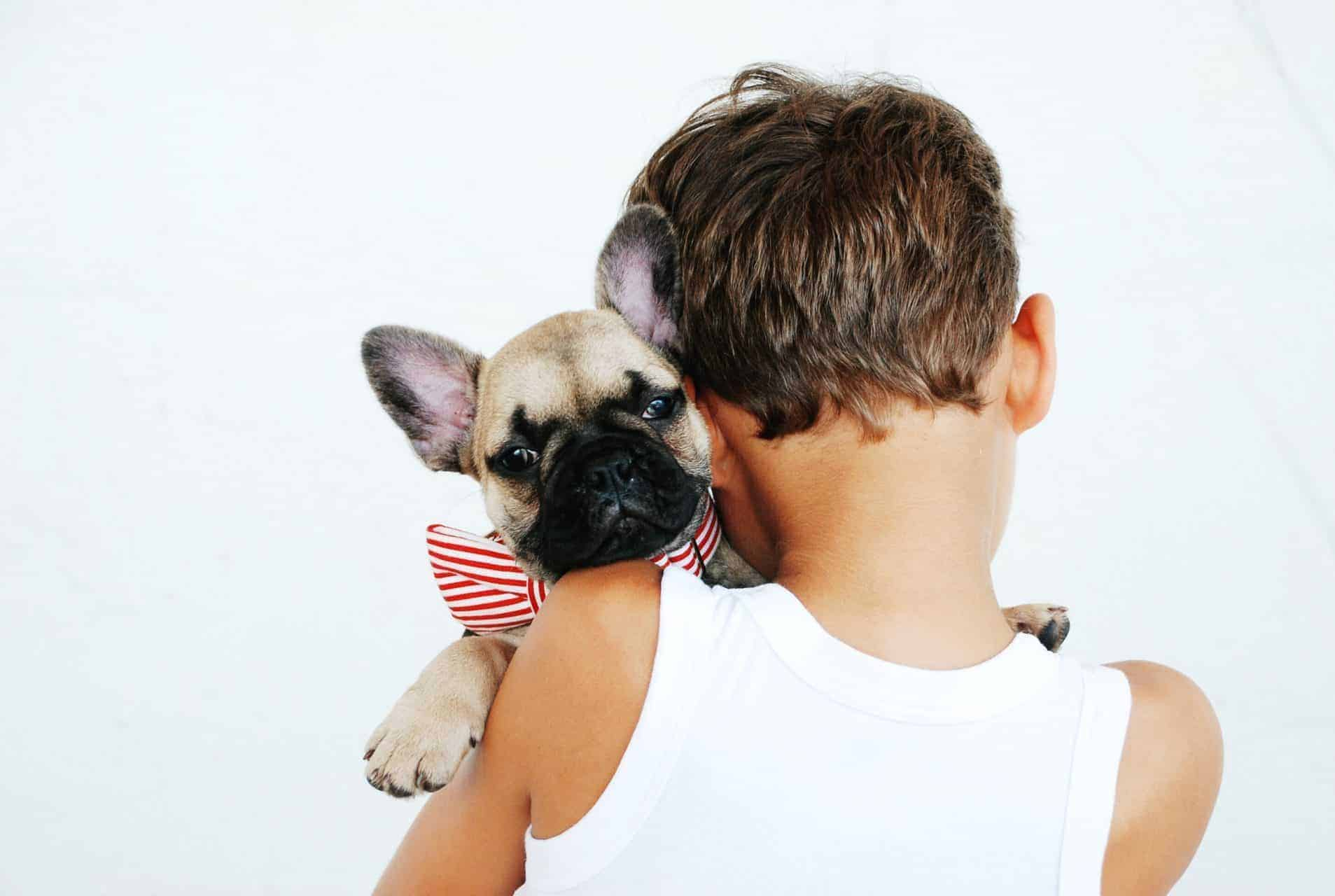 Boy wearing a white tank top faces away from the camera while holding a french bulldog in his arms wearing a red striped bow