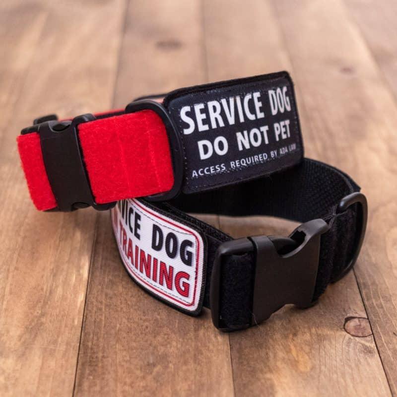 Service Dog Patch Collar