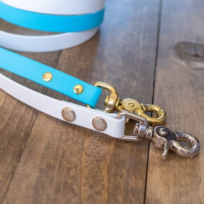 Brass and Silver Hardware on Standard Dog Leash