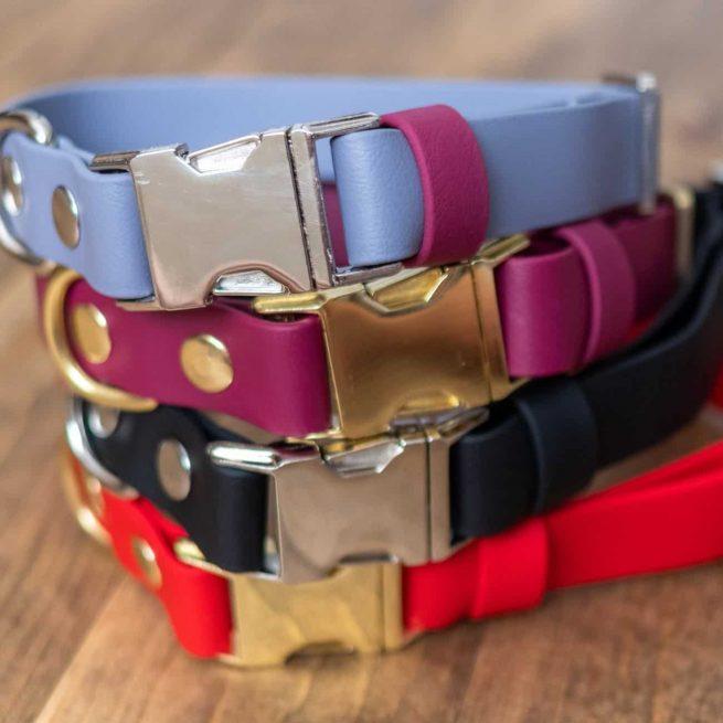 "1"" Dog Collar multicolors"