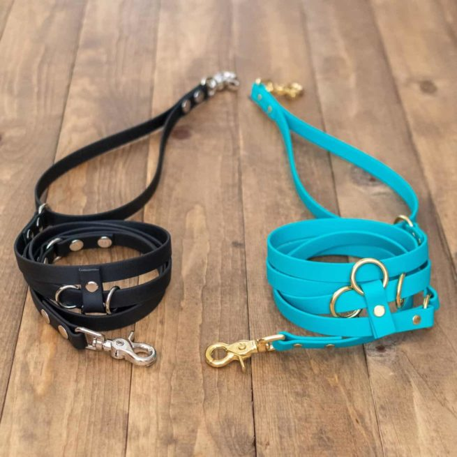 Black and Teal 9-Way Hands-Free Dog Leash