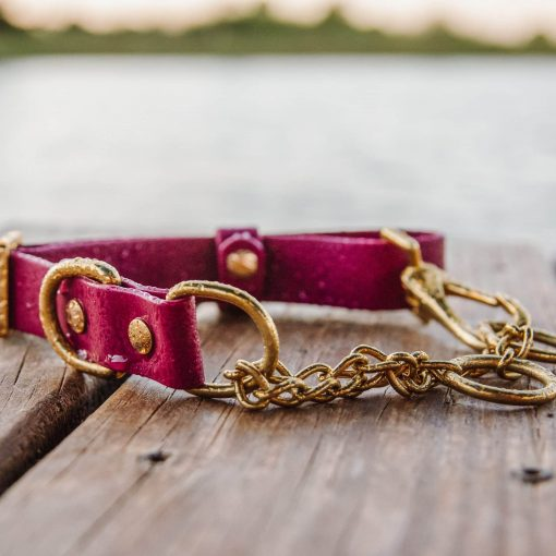 waterproof burgundy biothane martingale collar in brass