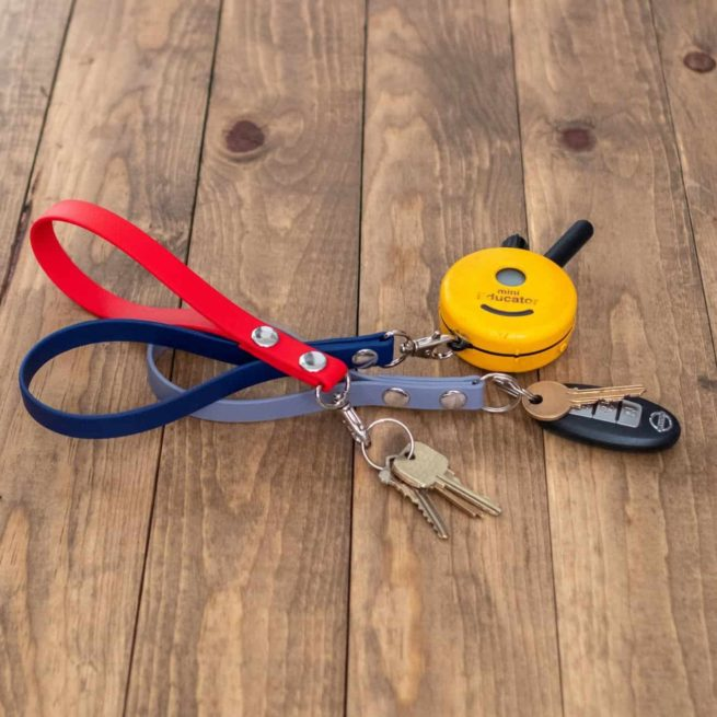 keychain holding keys and remote collar