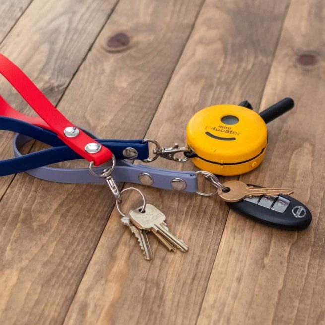 keychain holding keys and e-collar remote