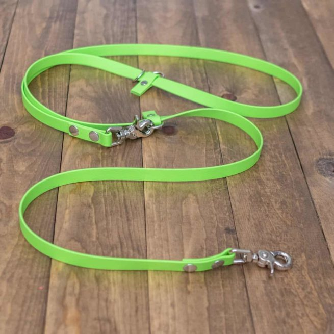 green and Silver Custom Adjustable Dog Leash