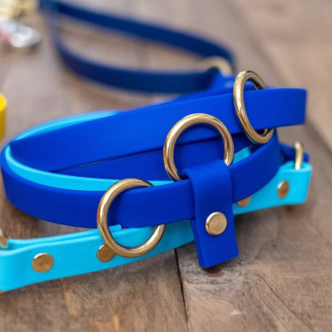 Brass O Rings On Multi-Colored Hands Free Leash