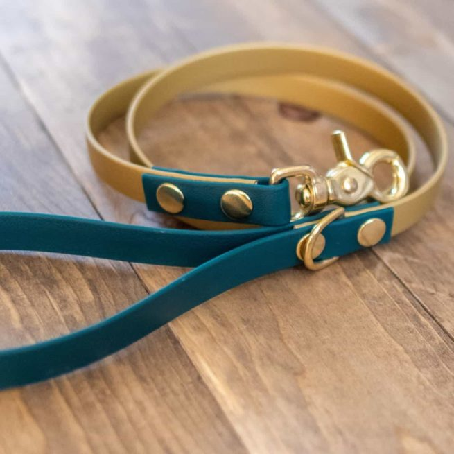 Green and Gold Multi-Colored Standard Dog Leash