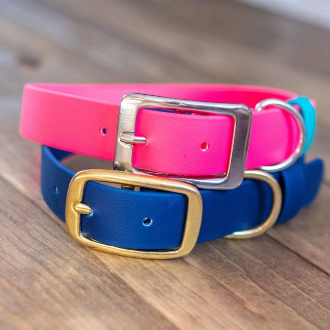 Pink and Navy Standard Buckle Collar