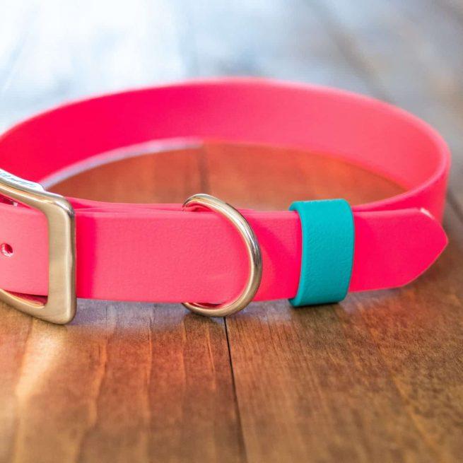 Pink Standard Buckle Collar