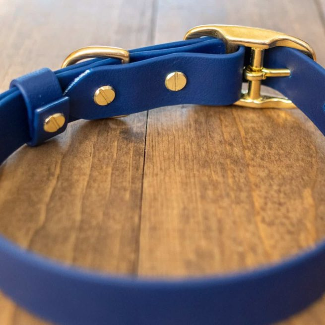 Navy Standard Buckle Collar