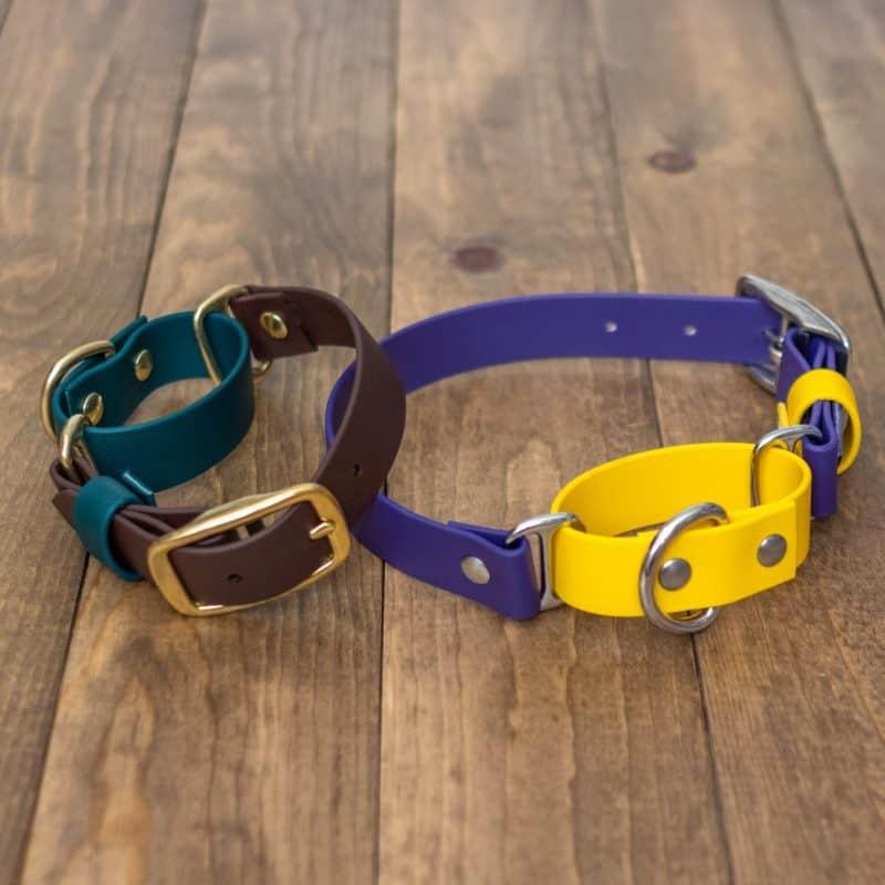 1″ Adventure Martingale Collar