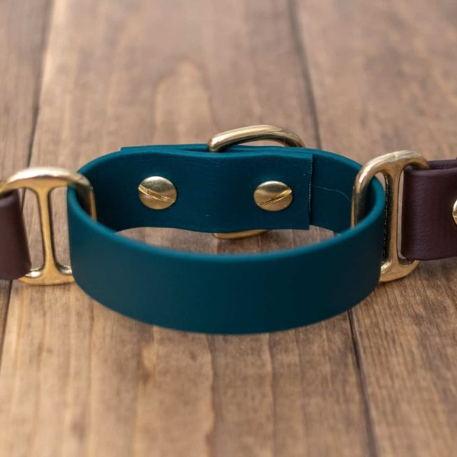 Adventure Martingale Collar in Green and Brown