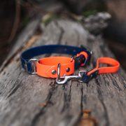 Two tone orange and blue biothane martingale dog collar waterproof