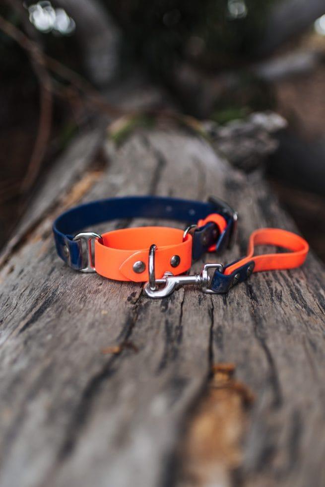 Two tone orange and blue biothane martingale dog collar waterproof