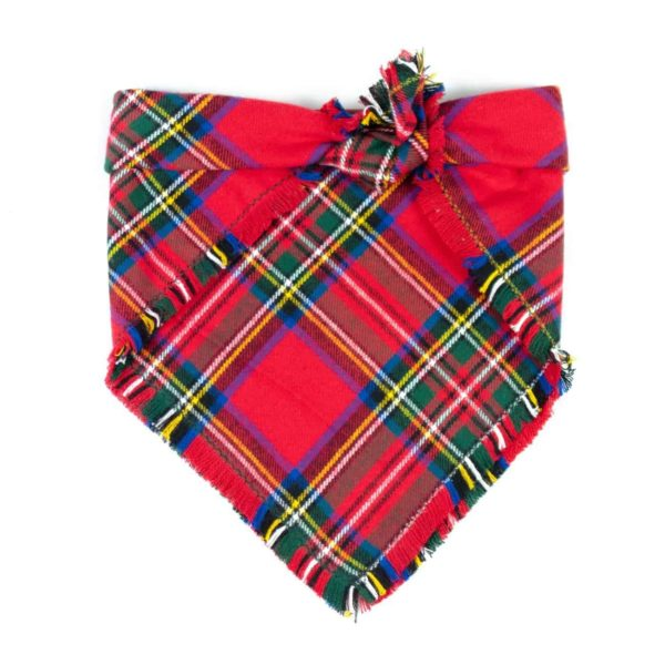 Red, Yellow, Green, and Blue Christmas Frayed Dog Bandana