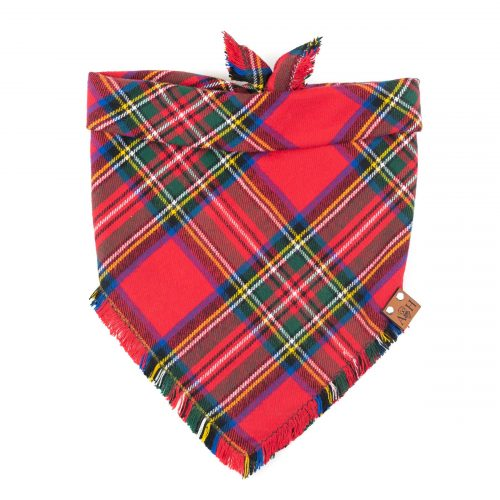 Red and green Christmas Holly Frayed dog bandana