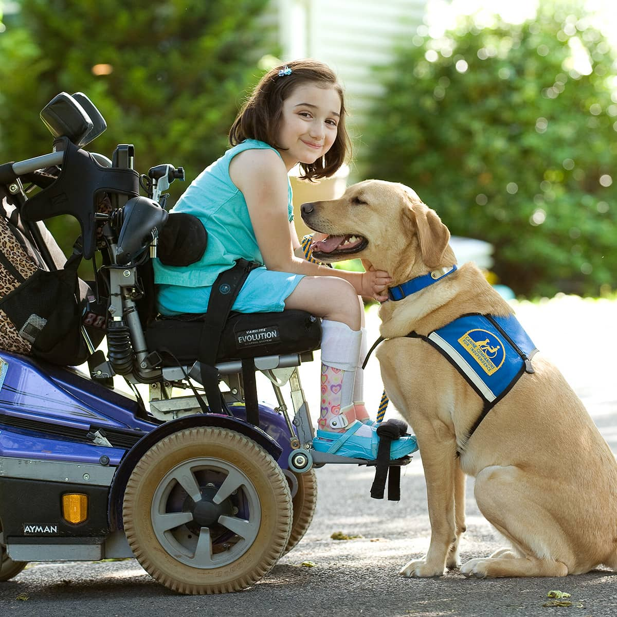Bridget and Willy: She used to always ask her parents or siblings for help when she dropped something out of reach. But now she has an assistance dog, Willy, to help her. Her dad says some of her proudest moments are when she takes care of Willy.