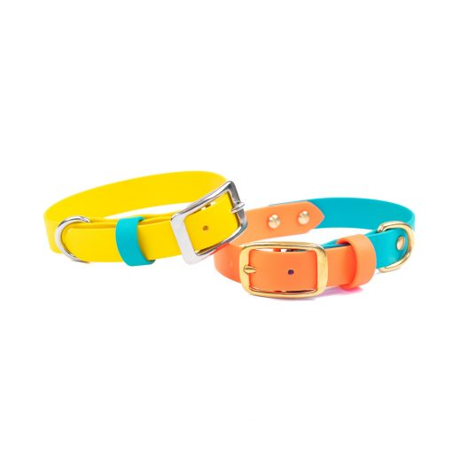 Outlast Collection Waterproof Biothane Dog Collar Violet Buckle Dog Collar Vegan Collar