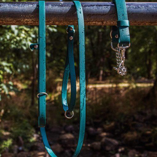 Forest Green Biothane dog slip leash