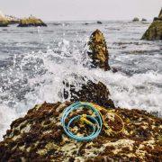 Blue and yellow biothane slip dog leash slip lead at ocean waterproof