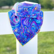 Rainbow dog bandana on white fence