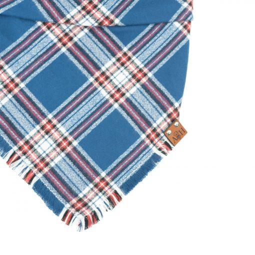 Light Blue, Red, white frayed dog bandana