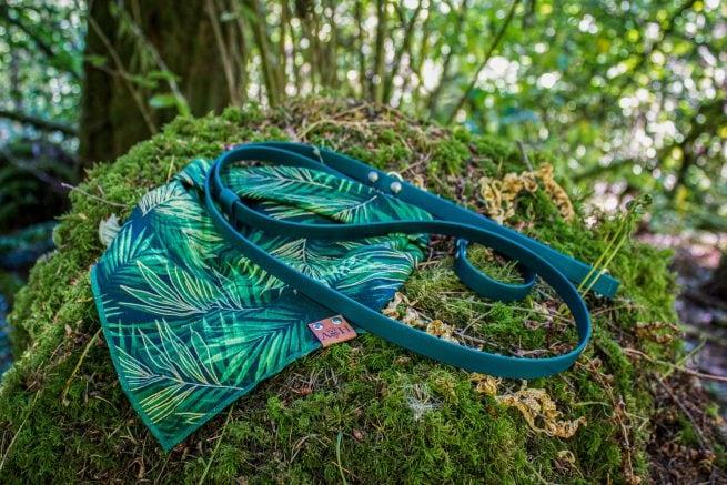 Palm tree dog bandana with a green leash on a moss covered rock