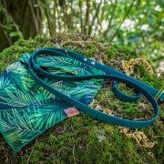 Palm tree dog bandana with a green leash on a moss covered rock