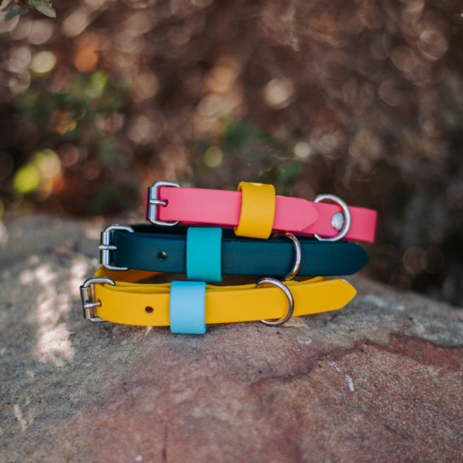 """5/8"""" small adventure dog collar in pink and green and yellow"""