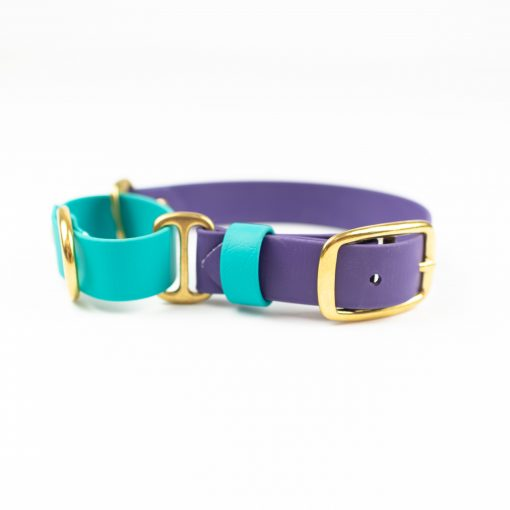 Teal and purple Adventure Martingale with brass hardware