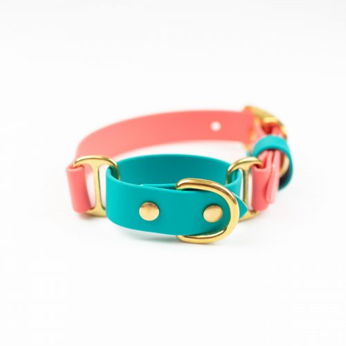 Coral, teal and brass solid brass Adventure Martingale collar