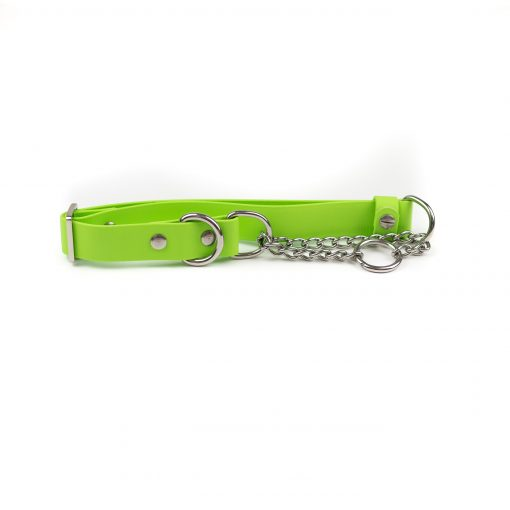 green and stainless steel classic martingale collar
