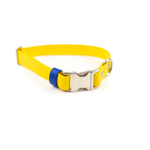 Yellow And Blue Quick Release Dog Collar