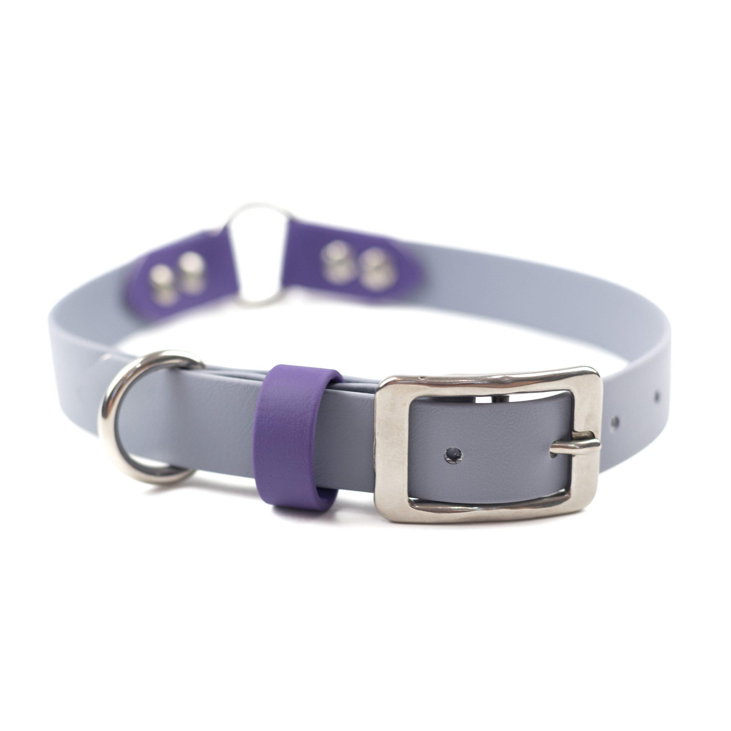 Grey, purple stainless steel o ring collar