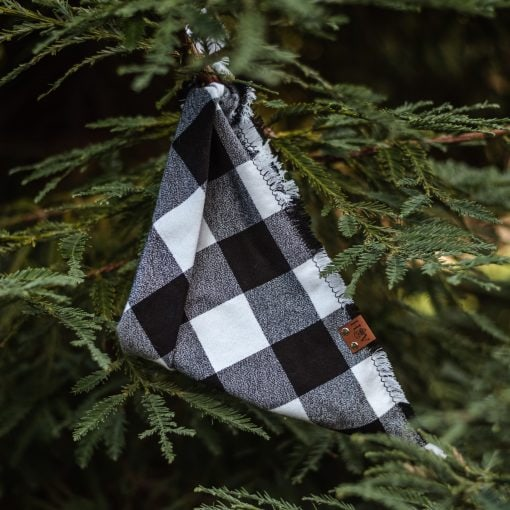 Chester Frayed Dog Bandana in Black and white hanging in a pine tree