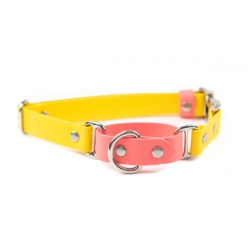 quick release adventure martingale in coral, sunshine and nickel