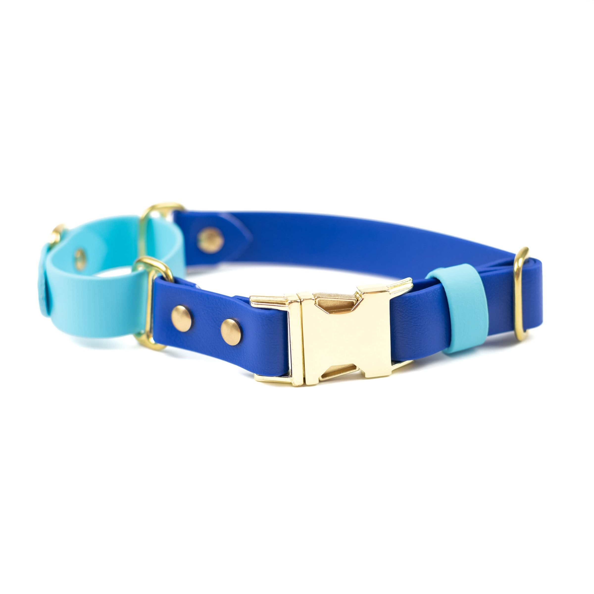 quick release adventure martingale in sky blue, blueberry and brass