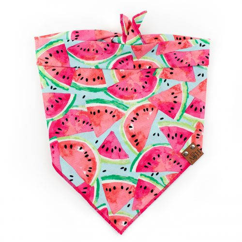 Pink, blue, green Watermelon Dog Bandana