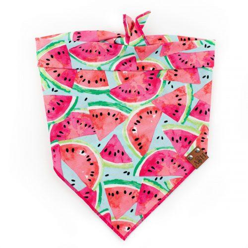 Pink, blue, green Watermelon Dog Bandana