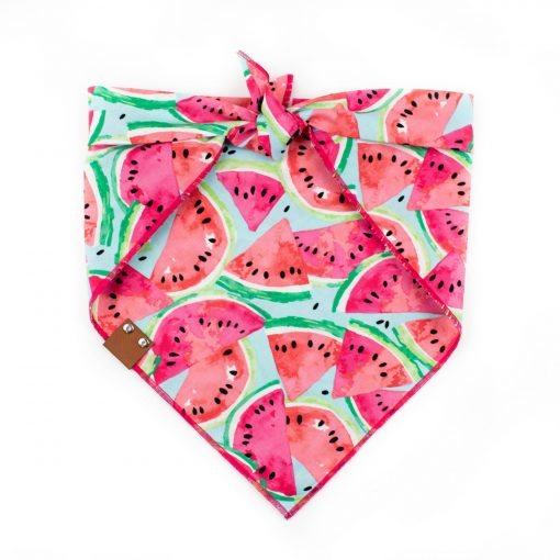 Pink, Green and Blue Watermelon Dog Bandana