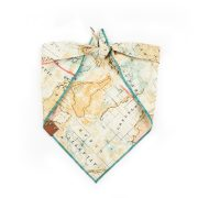 Tan, teal and pink map dog bandana