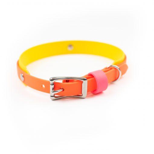 Multilayer biothane dog collar in yellow and orange