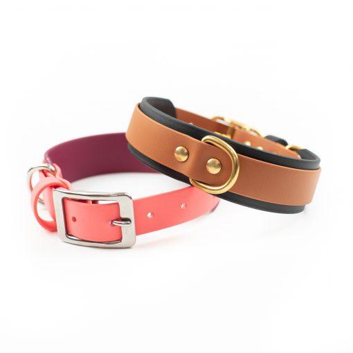 "Multicolored 1.5"" Layered Adventure Dog Collar"